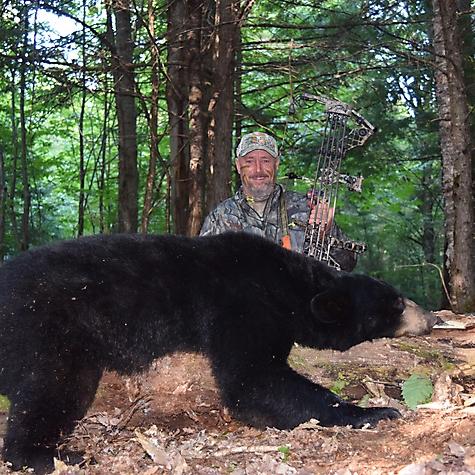 2016 Black Bear