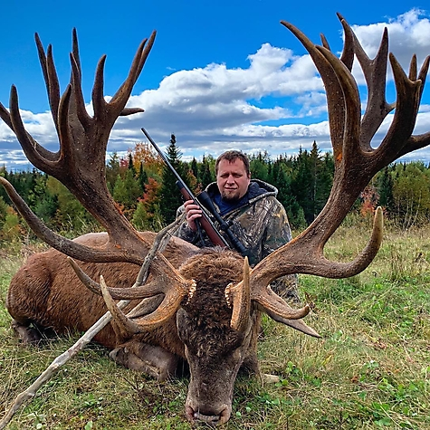 2019 Red Stag